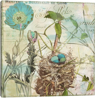 Nesting I Canvas Art Print