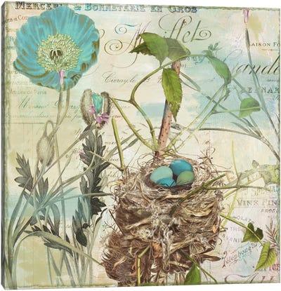 Nesting I Canvas Print #9681