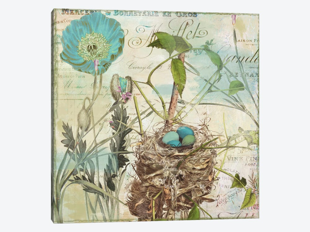 Nesting I by Color Bakery 1-piece Canvas Wall Art