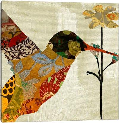 Humming bird brocade III Canvas Art Print