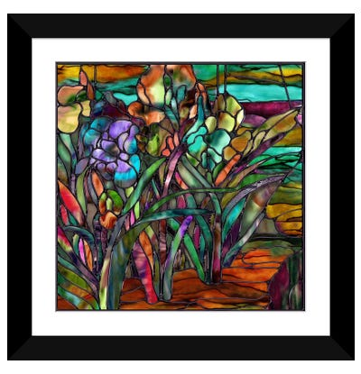 Candy Coated Irises Framed Art Print