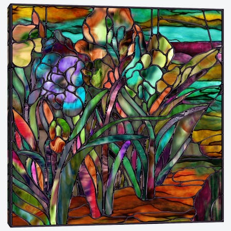 Candy Coated Irises Canvas Print #9704} by Mindy Sommers Art Print