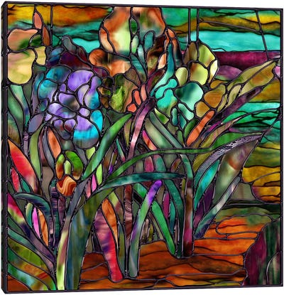 Candy Coated Irises Canvas Print #9704