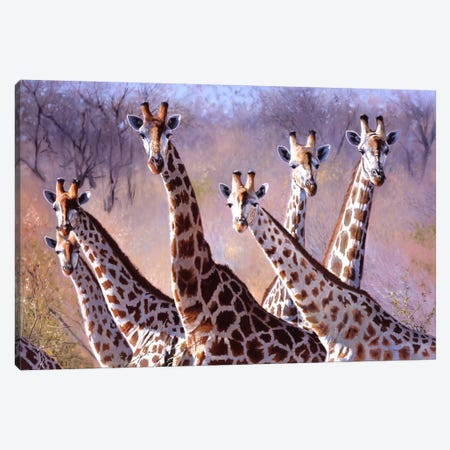 Giraffes Canvas Print #9843} by Pip McGarry Art Print