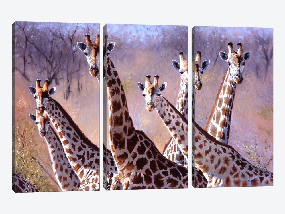 Giraffes by Pip McGarry 3-piece Art Print