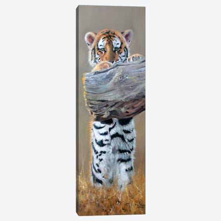 Tiger Cub Standing Up Canvas Print #9844} by Pip McGarry Canvas Artwork