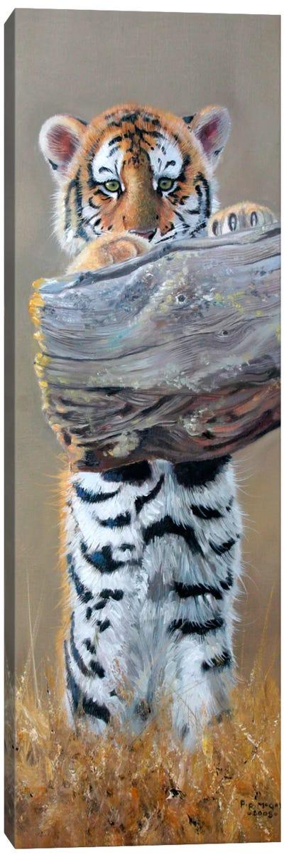 Tiger Cub Standing Up Canvas Art Print