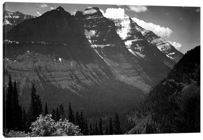 In Glacier National Park II Canvas Print #AAD12