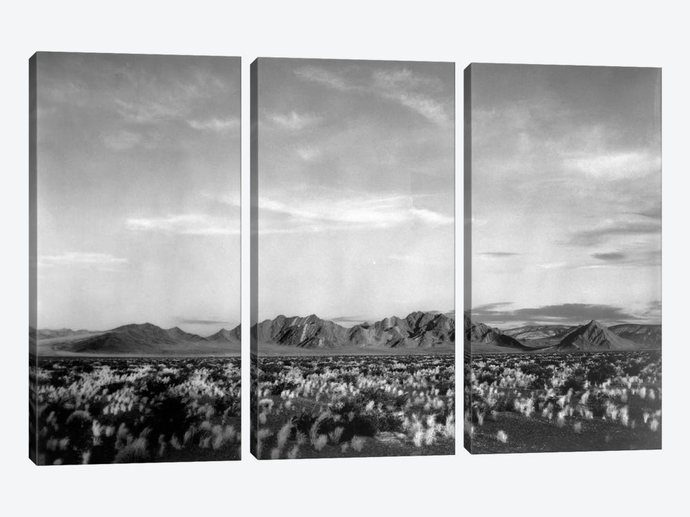 Near Death Valley National Monument by Ansel Adams 3-piece Canvas Artwork