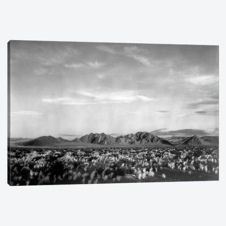 Near Death Valley National Monument Canvas Print #AAD14} by Ansel Adams Canvas Wall Art