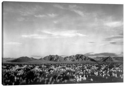 Near Death Valley National Monument Canvas Art Print