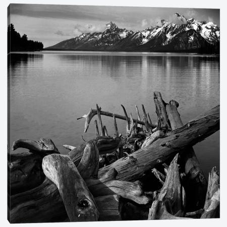 Captionless Canvas Print #AAD20} by Ansel Adams Canvas Wall Art