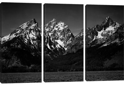 Grand Teton XI Canvas Art Print