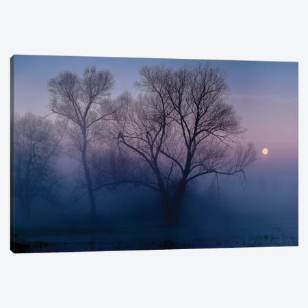 Another New Day Canvas Print #AAG7} by Andreas Agazzi Canvas Print