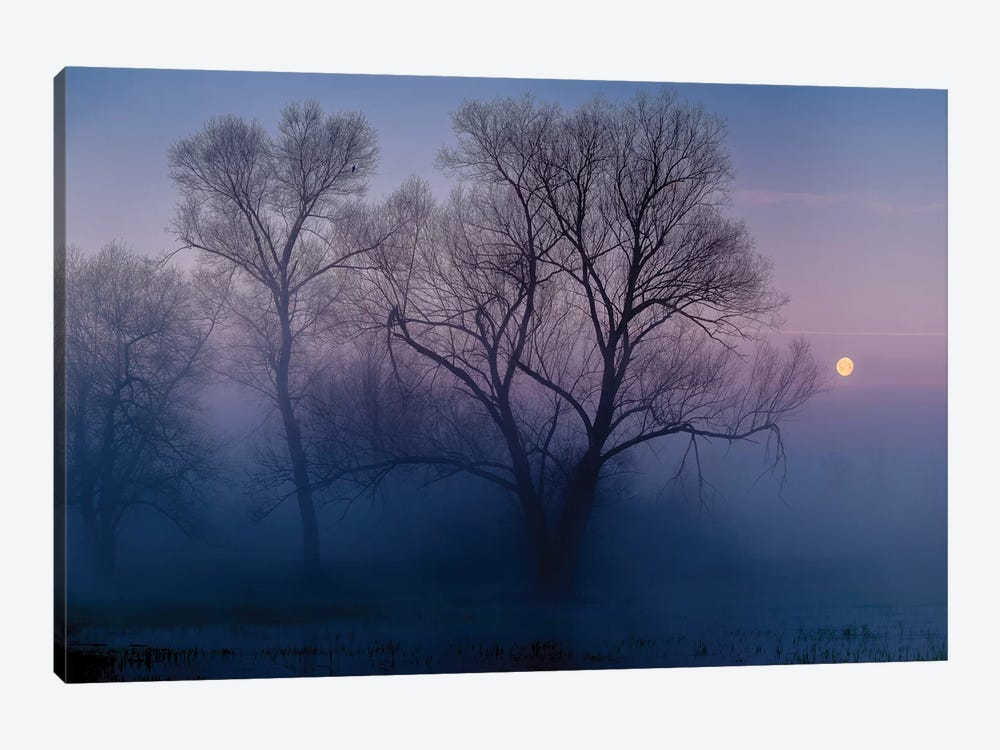 Another New Day by Andreas Agazzi 1-piece Canvas Wall Art