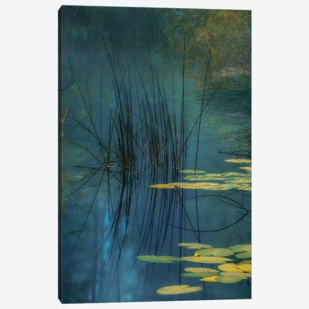 Aqua Canvas Print #AAG8} by Andreas Agazzi Canvas Wall Art
