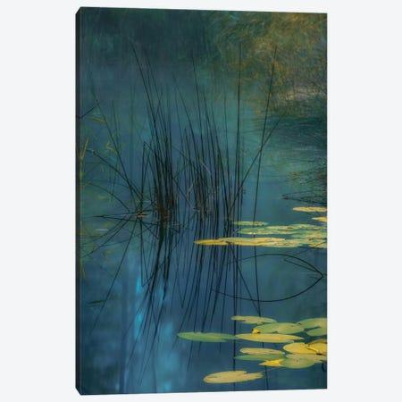 Aqua Canvas Print #AAG8} by Andreas Agazzi Canvas Wall Art