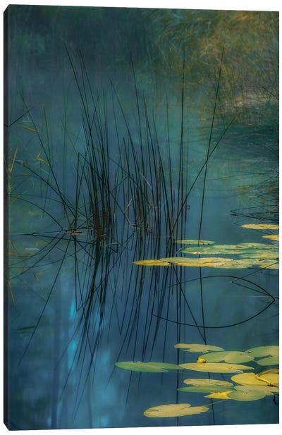 Aqua Canvas Art Print