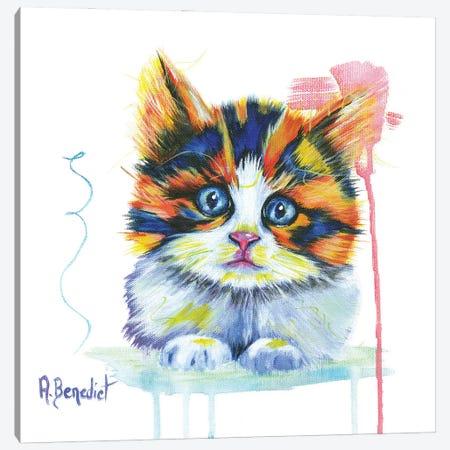 Cali Kitty Canvas Print #AAH17} by A & A Arthappy Canvas Art
