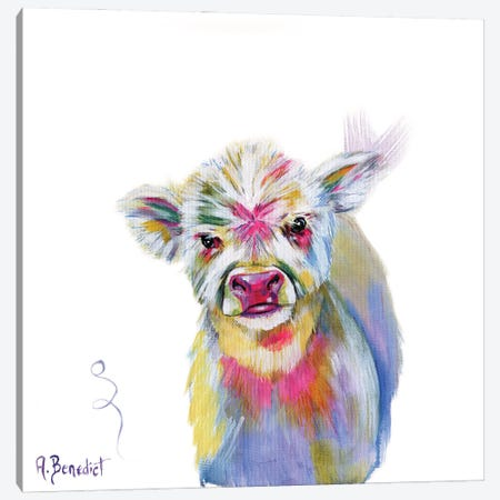 Highland Calf Canvas Print #AAH19} by A & A Arthappy Canvas Print
