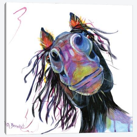 Charley Horse Canvas Print #AAH24} by A & A Arthappy Art Print