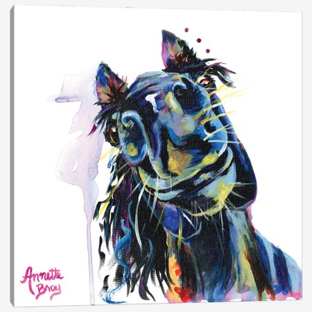 Charlie Horse Canvas Print #AAH3} by A & A Arthappy Canvas Print