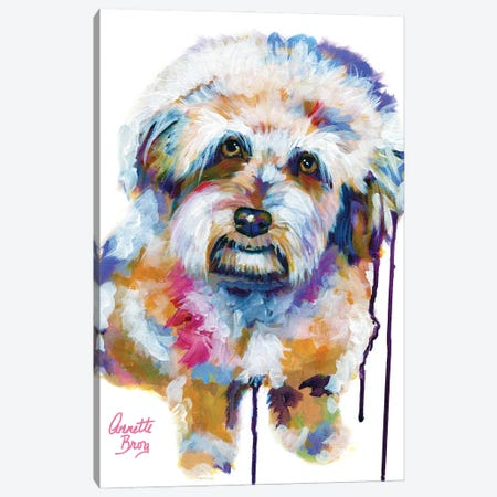 Jake The Aussie Doodle Canvas Print #AAH41} by A & A Arthappy Canvas Wall Art