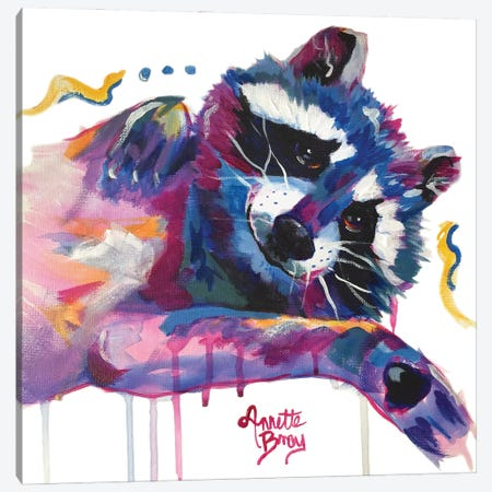Lil Stormy Racoon Canvas Print #AAH9} by A & A Arthappy Canvas Art Print