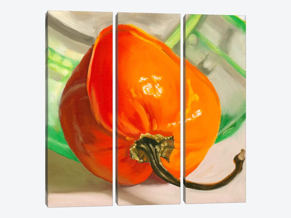 Orange Habanero by Andrea Alvin 3-piece Canvas Print