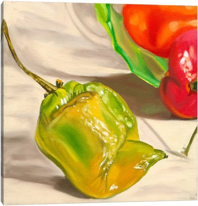 Yellow Habanero Canvas Art Print