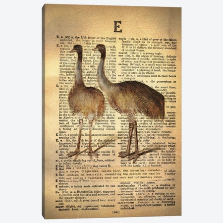 E - Emu Canvas Print #AALP10} by 5by5collective Canvas Art Print