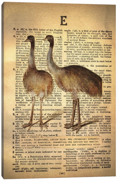 E - Emu Canvas Art Print