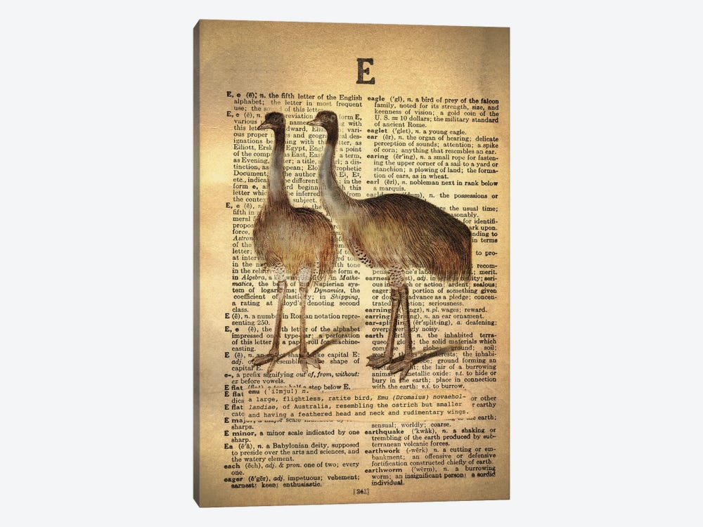 E - Emu by 5by5collective 1-piece Art Print