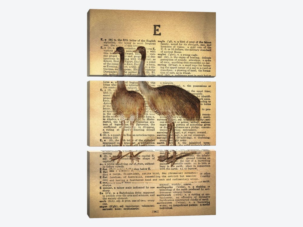 E - Emu by 5by5collective 3-piece Canvas Print