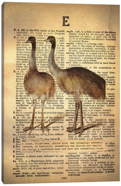E - Emu Canvas Art Print