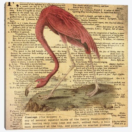 F - Flamingo Square Canvas Print #AALP11} by 5by5collective Canvas Print