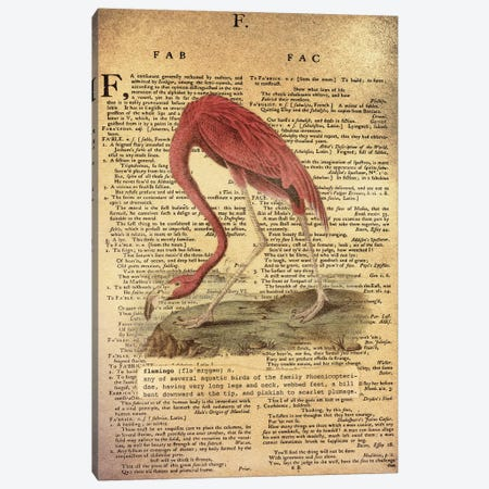 F - Flamingo Canvas Print #AALP12} by 5by5collective Art Print