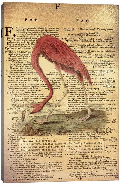F - Flamingo Canvas Art Print