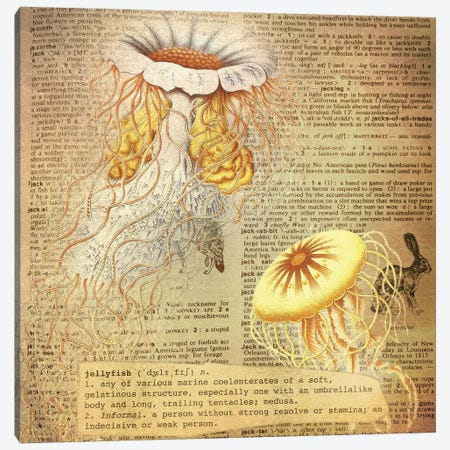 J - Jellyfish Square Canvas Print #AALP19} by 5by5collective Art Print