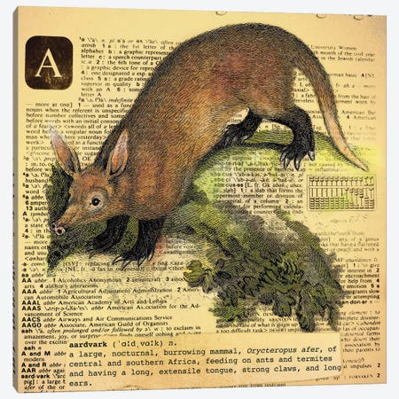 A - Aardvark Square Canvas Print #AALP1} by 5by5collective Art Print
