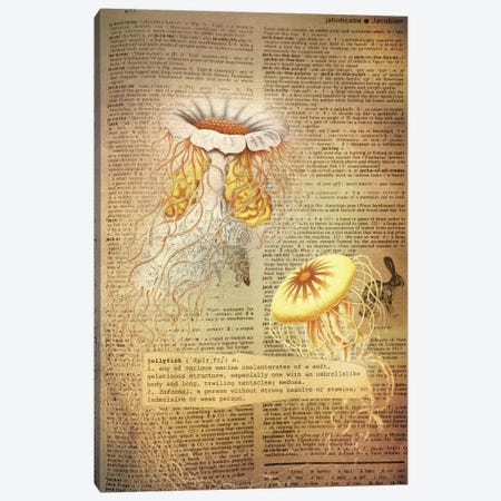 J - Jellyfish Canvas Print #AALP20} by 5by5collective Canvas Wall Art