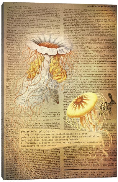 J - Jellyfish Canvas Art Print