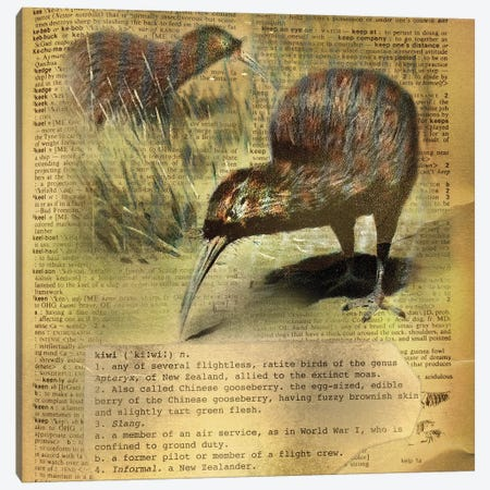 K - Kiwi Square Canvas Print #AALP21} by 5by5collective Canvas Artwork