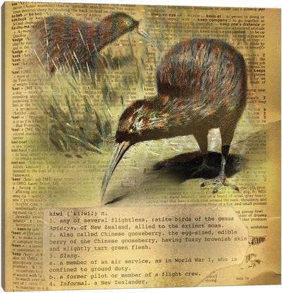 K - Kiwi Square Canvas Art Print