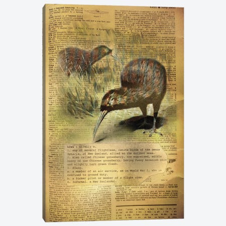 K - Kiwi Canvas Print #AALP22} by 5by5collective Canvas Art
