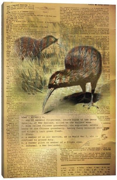 K - Kiwi Canvas Art Print