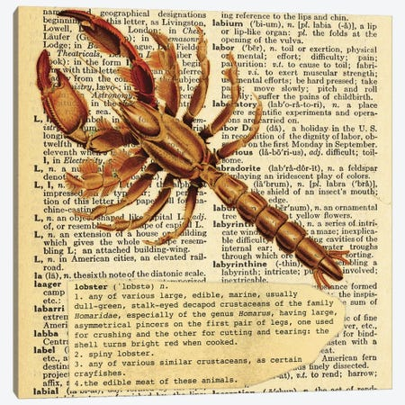 L - Lobster Square Canvas Print #AALP23} by 5by5collective Canvas Artwork