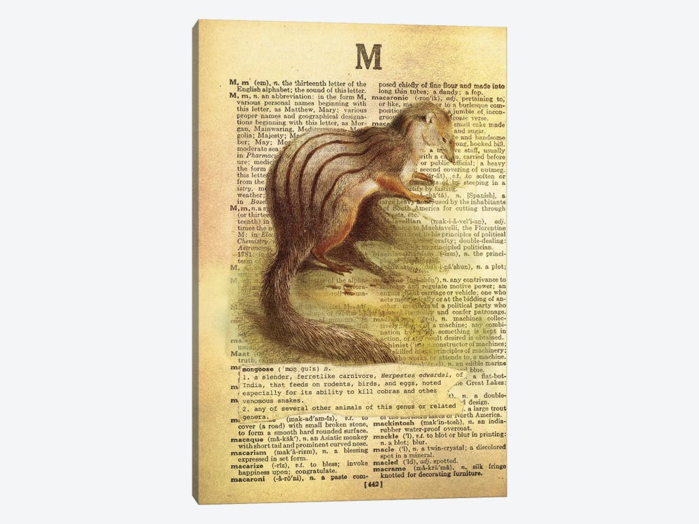 M - Mongoose 1-piece Canvas Wall Art