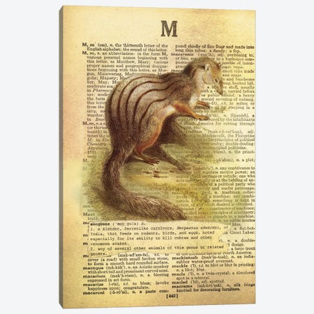 M - Mongoose Canvas Print #AALP26} by 5by5collective Canvas Print