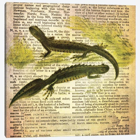 N - Newt Square Canvas Print #AALP27} by 5by5collective Canvas Art Print